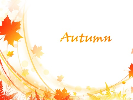 leafage: Autumn maple leaves bright frame, copy-space for your text  Illustration