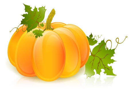 Big pumpkin with green leaves over white background