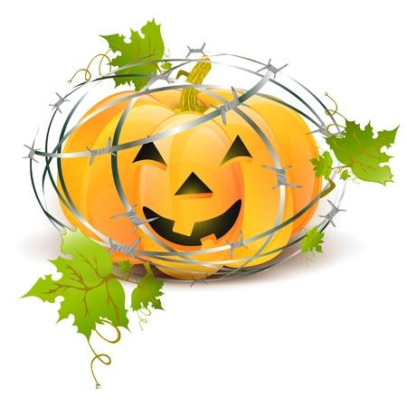 Big Halloween pumpkin with green leaves over barbwire Vector