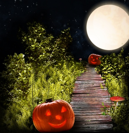 magical forest: wooden road with Halloween pumpkins and fly-agarics through night forest with fern  Stock Photo