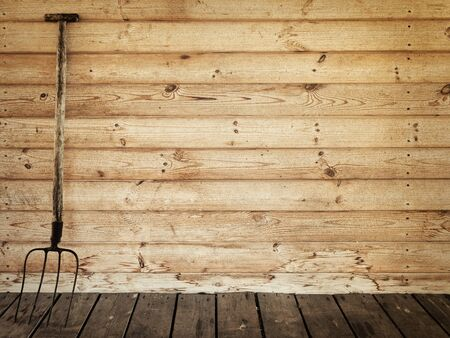 agricultural implements: old pitchfork near the wooden wall