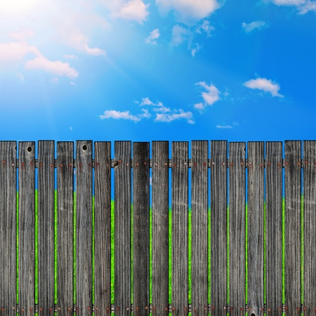 grass plot: wooden fence against the blue sky