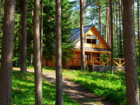 cabina: Casa de troncos en el bosque