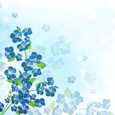 fleurs des champs: illustration de l'arri�re-plan forget-me-not fleurs