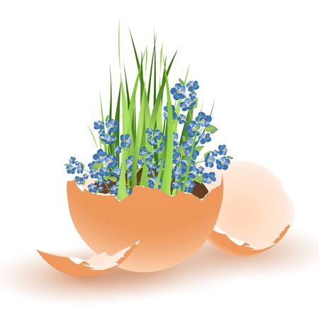 broken eggs: Easter theme with egg and growing flowers over white background Illustration
