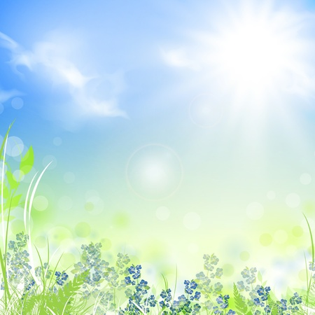 forget me not: summer meadow with green grass over blue sky with sun, copyspace