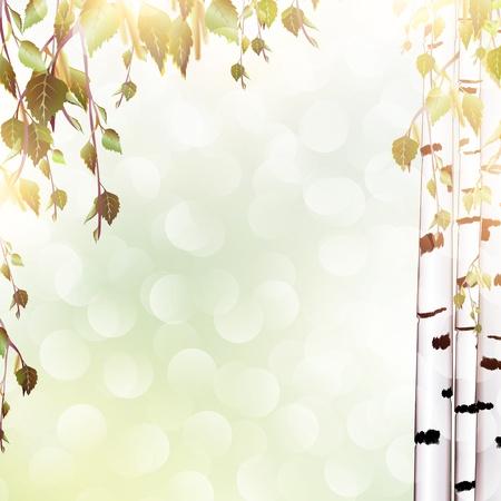 blinking: antecedentes de verano brillante con ramas de abedul, copyspace para el texto Vectores