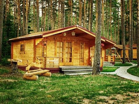 시골집: 소나무 숲에 꽃과 나무 오두막 스톡 사진