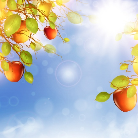 illustration of apple tree over blue sky with summer sun