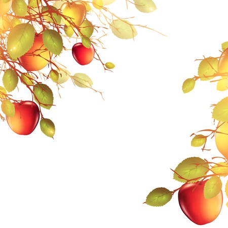 illustration of apple tree over white background Vector