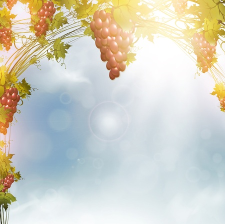 Illustration of red grape vine frame over blue sunny sky Stock Vector - 12485077