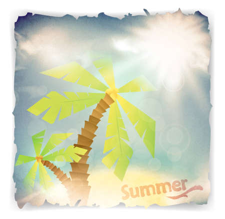 subtropical: vintage grunge summer background with palm trees