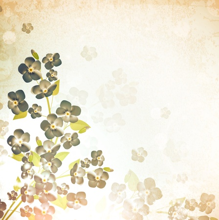 forget-me-not flower vintage grunge background Vector