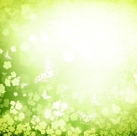 green butterfly: Spring or summer grunge background with butterflies and flowers silhouette, copyspace for your text
