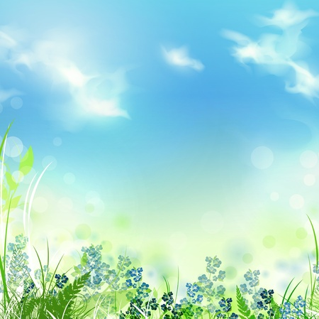 forget me not: summer or spring meadow with green grass over blue sky, copyspace