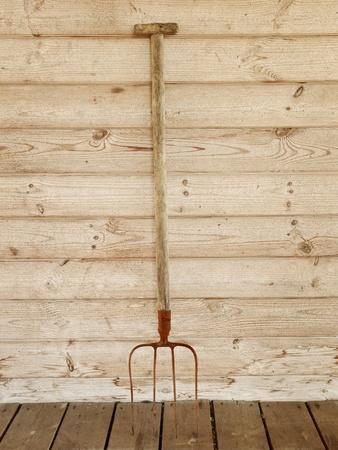hayfork: single rusty pitchfork near the wooden wall