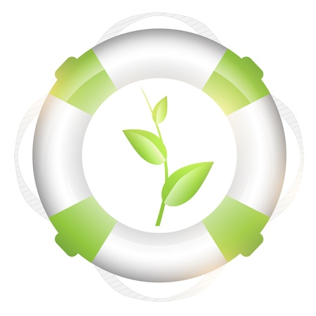 lifebuoy: lifebuoy with green sprout over white background