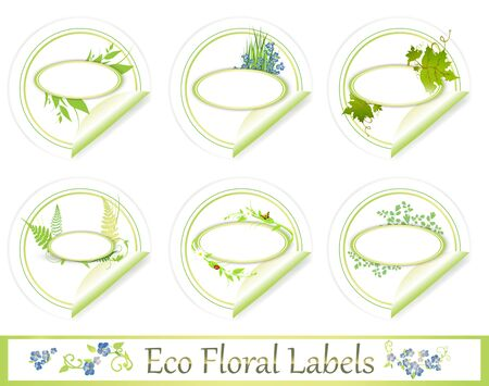 forget me not: eco green floral label set over white