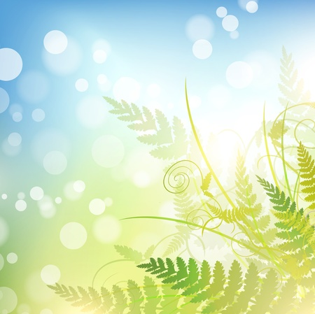spring background with green fern over blue sky Vector