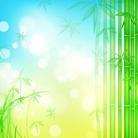 green bamboo forest over blue sky, copyspace