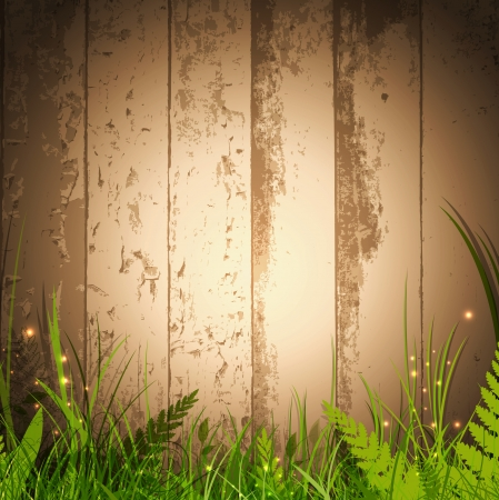 fern: magic grass over wooden background with spotlight for your advertising