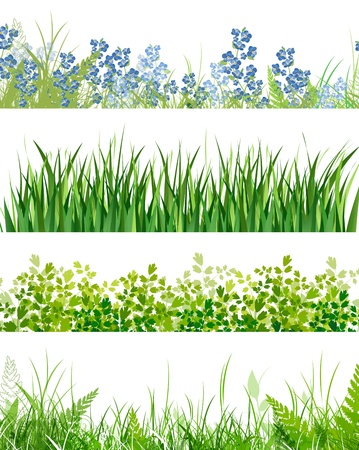 hedges: green grass floral banner collection over white background
