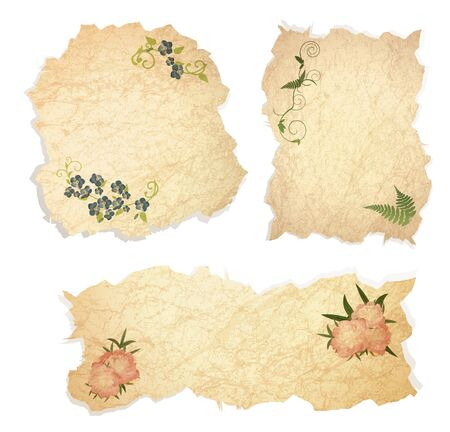Vintage paper pieces with floral decoration over white background Vector