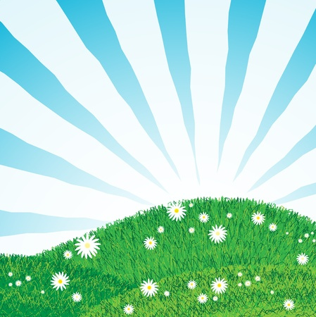 grassy field: green grass lawn with abstract sun rays over blue sky