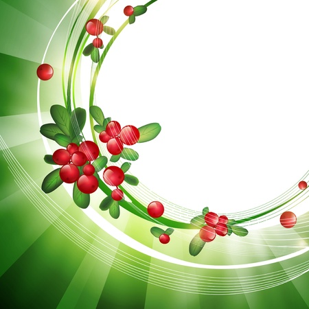 Green Frame With Cranberries, Copyspace for Your Text Stock Vector - 15476649