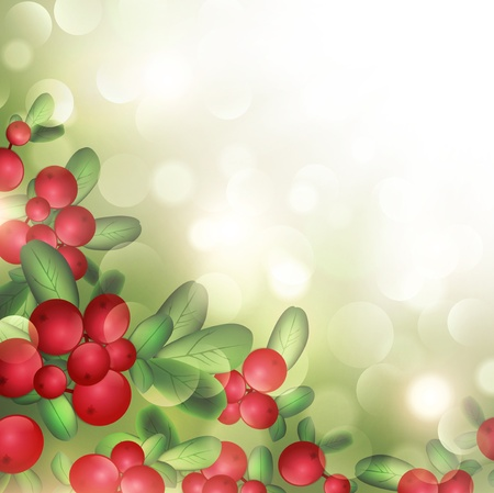 wild berry: Cranberries With Green Leaves Over Sunny Summer Background Illustration