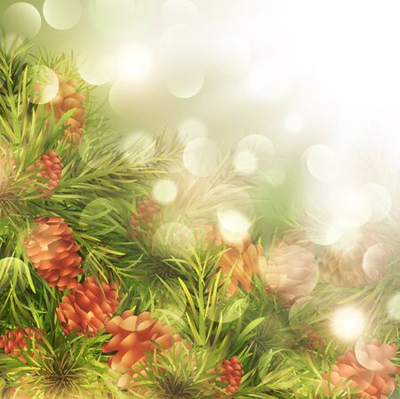 pine cone: Fir Tree Brunches With PIne Cones Over Bright Background