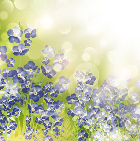 Summer or Spring Meadow With Forget Me Not Flowers Vector