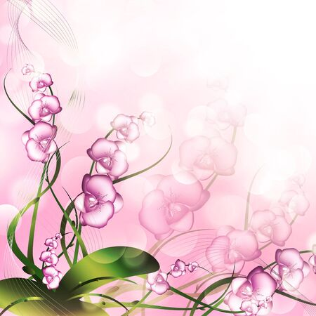 orchidea: Purple Orchid Over Bright Abstract Background