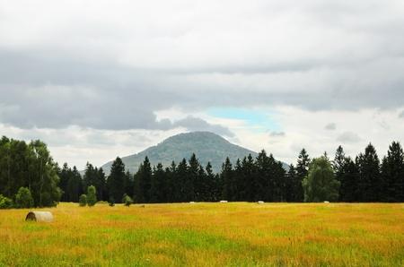 czech switzerland: Svizzera Ceca. Campo In fronte alla montagna. Archivio Fotografico