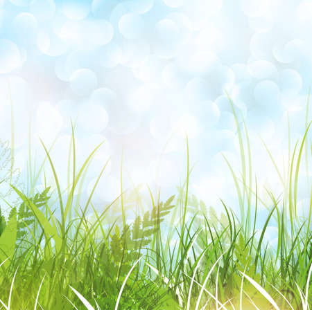 Spring or Summer Meadow With Green Grass Stock Vector - 17431294