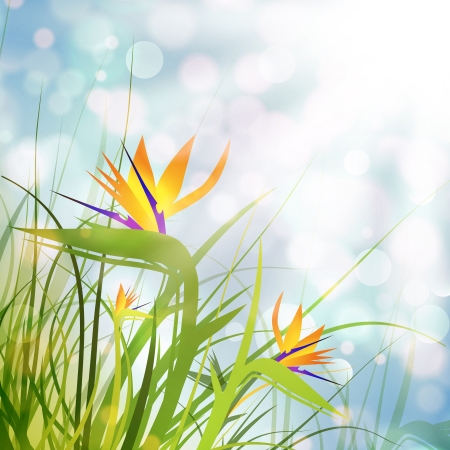 Bird of Paradise Flowers (Strelitzia) Over Sunny Background Vector