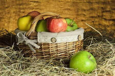 garden stuff: Basket With Harvest Of Ripe Apples In The Hay