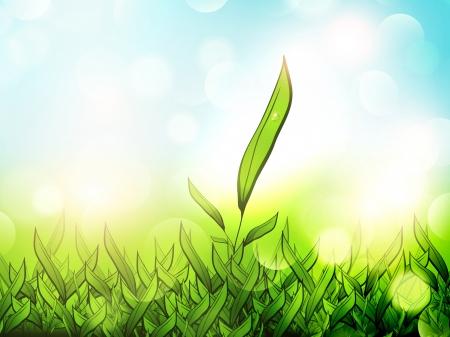 Illustration of Green Tea Plantation Over Sunny Background Ilustração