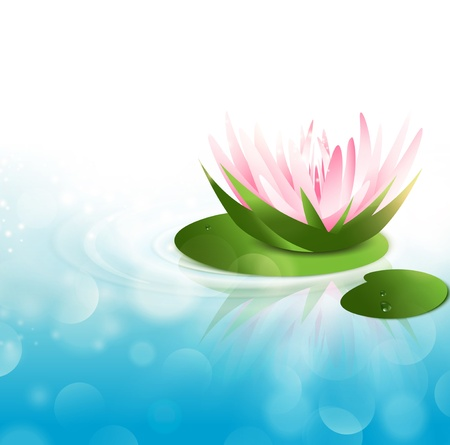 pond: Pink Water Lily at Green Leaf Over Blue Water Background, Copy Space