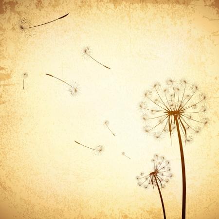 Illustration of Vintage Grunge Dandelion Background Vettoriali