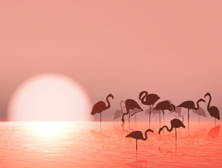 Flamingo Silhouette and Sunset at the Lake Vector