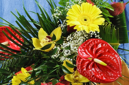 spadix: Bouquet Of Gerbera And Anthurium Flowers Stock Photo