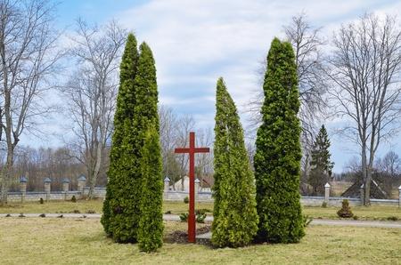 thuja: Wooden Cross In The Yard Of Juzefova Roman Catholic Church. Vecpils. Latvia.