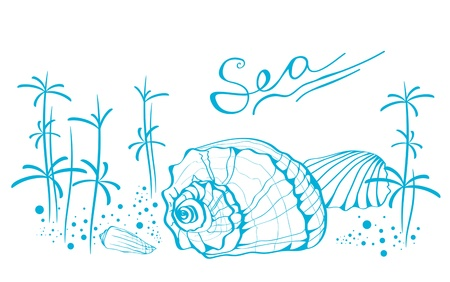 nautilus shell: Illustration of Abstract Sea Life With Copyspace For Your Text (