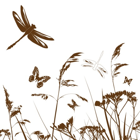 dragonfly: Summer Meadow Silhouette With Dragonfly and Grass