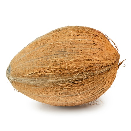 Single Hard-shelled Coconut Over The White Background photo