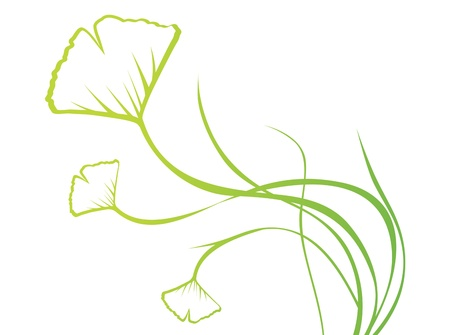 oxidant: Abstract Ginkgo Biloba Floral Over White, Copyspace