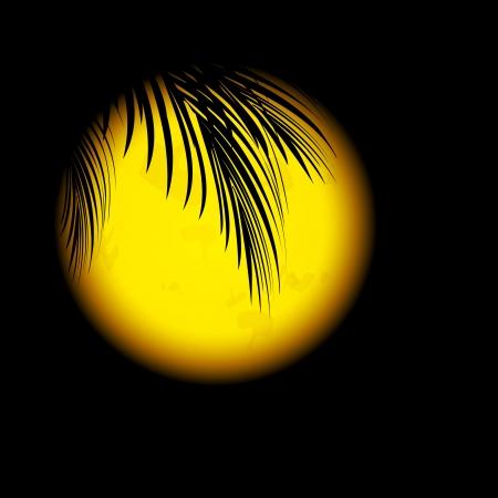 luz de luna: Tropic Night con hojas de palma y Big Orange Moon Vectores