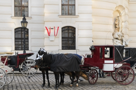 horse and carriage: Parking Of Fiacres On The Michaelerplatz  Vienna  Austria  Stock Photo