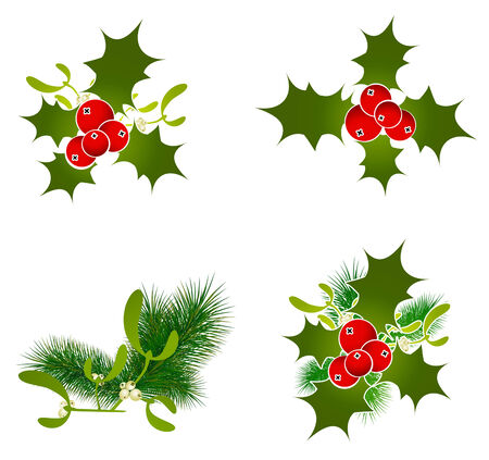 aquifolium: Christmas Decorative Elements at White Background
